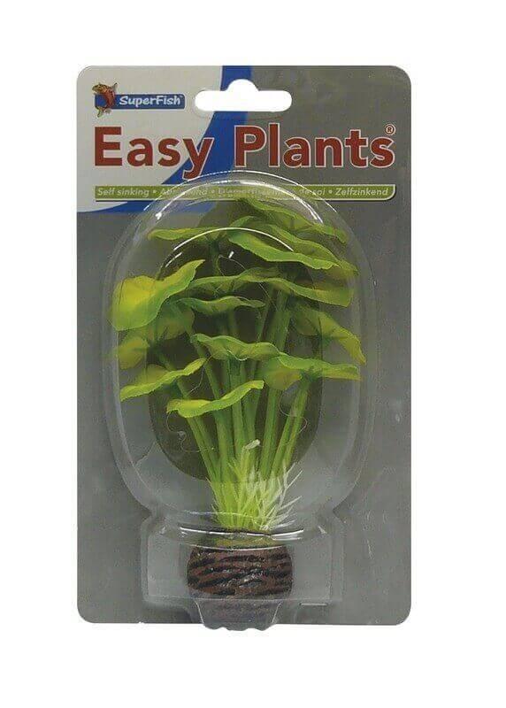 SF Plantes artificielles - Easy Plants Soie avant plan 13cm (5 modèles)_4