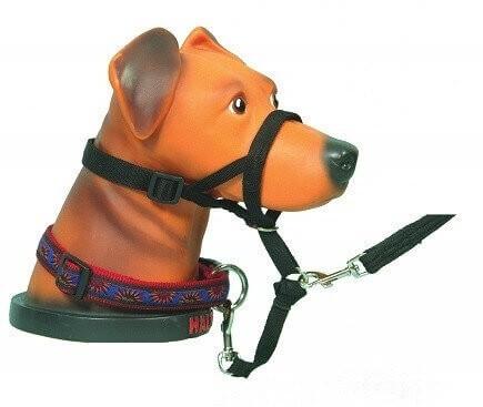 Collar de manejo para perros HALTI negro o rojo   _0