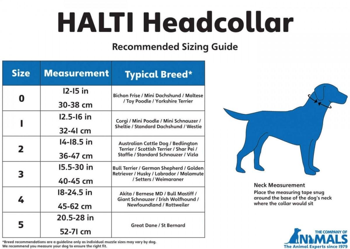 Collar de manejo para perros HALTI negro o rojo   _3