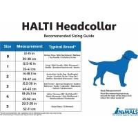 Licol pour chien HALTI - 2 couleurs au choix  (4)