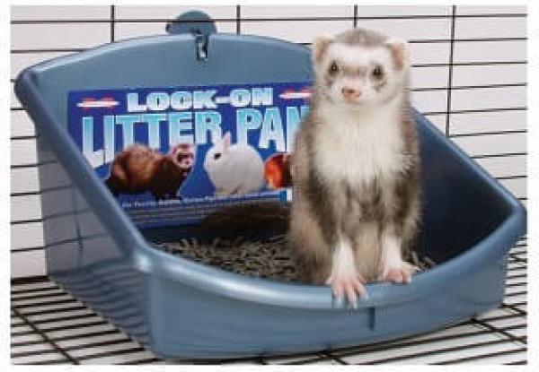 Lock-On Litter Pan