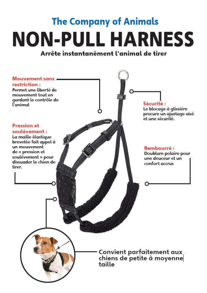The Best Dog Harness Review - Top Dog Tips