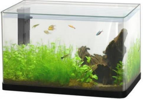 Aquarium Aqua Scalaire 40 LUXE noir angles courbés