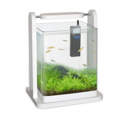 Aquarium 25x25x30 cm design blanc avec clairage led et for Aquarium meuble design