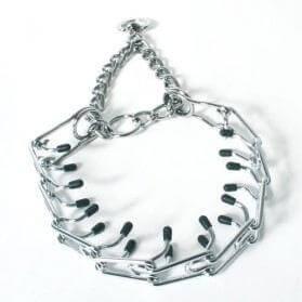 Collar Torquatus _0