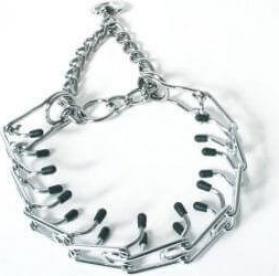 Collar Torquatus