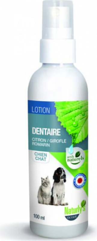 Lotion dentaire