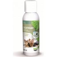 Gel cicatrisant 100% naturel chien et chat