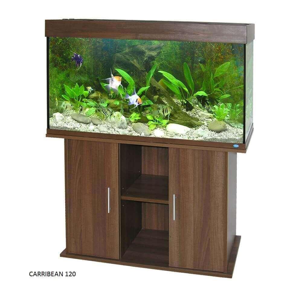 Mueble para acuario carribean wenge acuario y mobiliario for Mueble acuario
