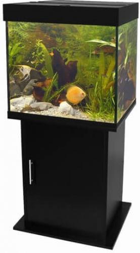 Meuble pour aquarium poseidon noir aquarium et meuble for Aquarium avec meuble