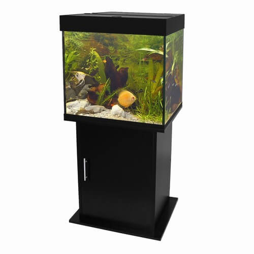 Meuble pour aquarium poseidon noir aquarium et meuble for Meuble aquarium design