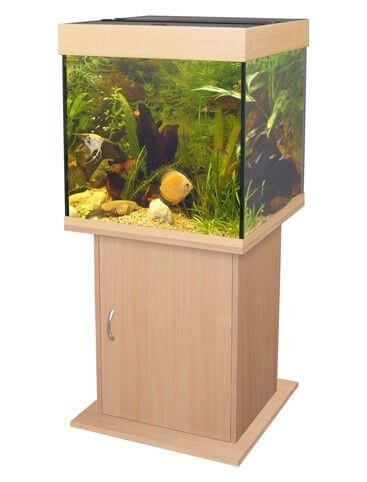 meuble pour aquarium poseidon h tre aquarium et meuble. Black Bedroom Furniture Sets. Home Design Ideas