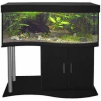 Aquarium équipé Cap Horn noir 218L