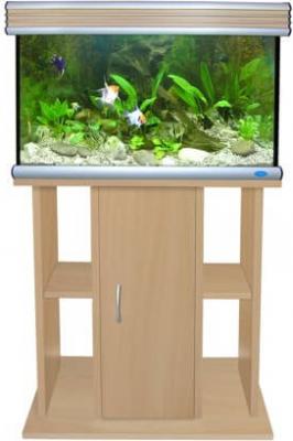 Meuble Aquarium hêtre