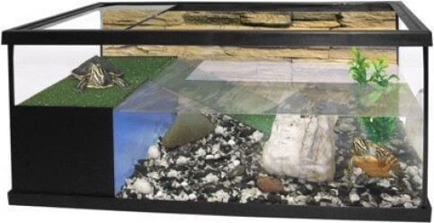 Aquaterrarium en set