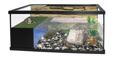Aquaterrarium en set_0