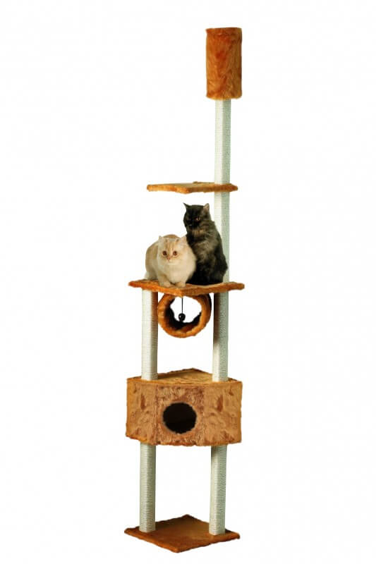 arbre chat duo kratzstamm miel du sol au plafond arbre. Black Bedroom Furniture Sets. Home Design Ideas