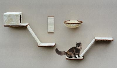 Árbol rascador para gato con pasarelas, 8 piezas