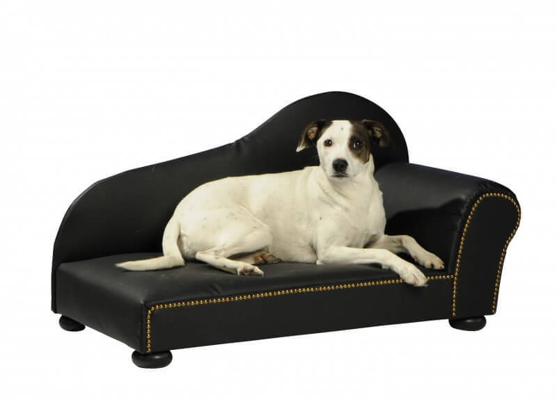 Canap pour chien lederoptikgr noir panier et corbeille for Canape pour chien