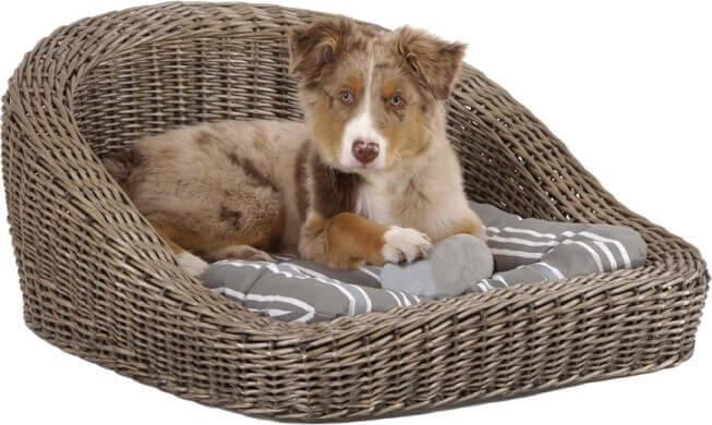 Canapé pour chien en rotin_0