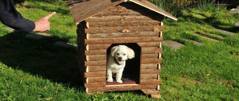 Niche pour chien lars gr aspect naturel niche for Repulsif chien exterieur naturel