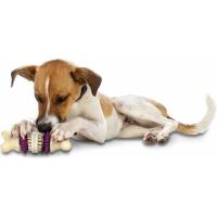 Recharge friandises pour jouet Bristle et Bouncy bone