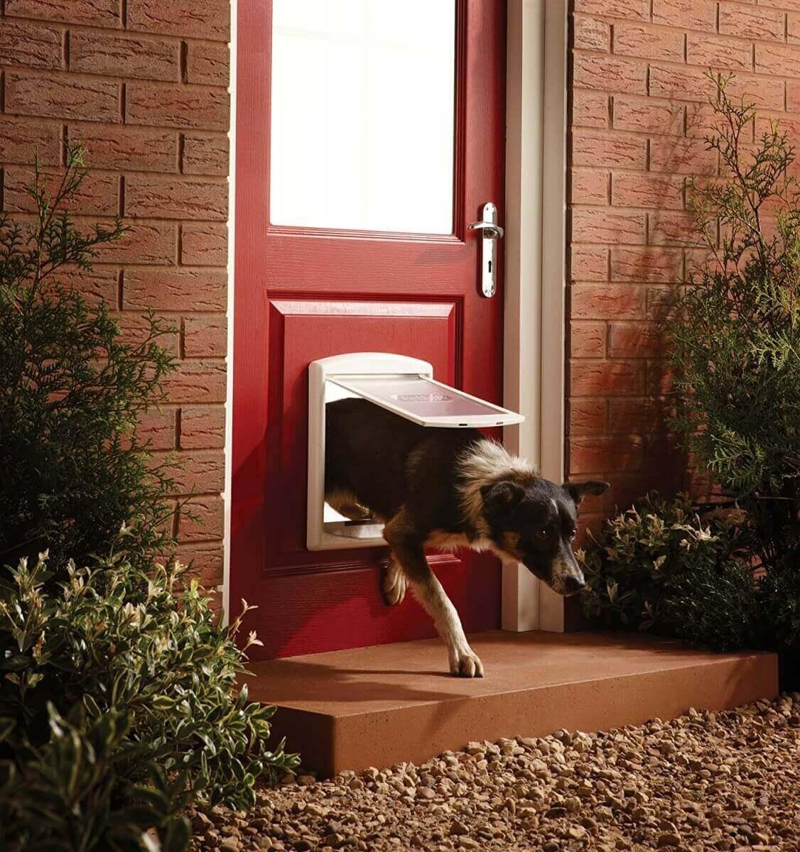 porte staywell 2 positions 715efs pour chat et chien. Black Bedroom Furniture Sets. Home Design Ideas