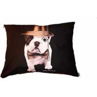Coussin domino Teo Dandy
