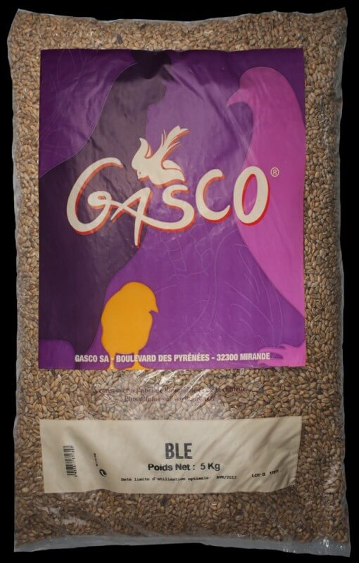 Blé Gasco_1