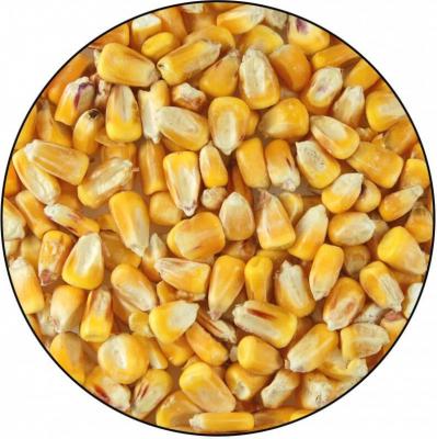 Corn 5kg