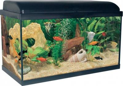 Aquadream 60 noir 54 litres avec éclairage LED