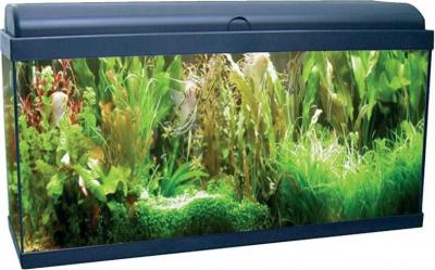 Aquadream 80 noir 90 litres avec éclairage LED