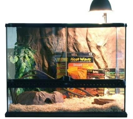 kit terrarium pour serpent juv nile 60x45x45 terrarium. Black Bedroom Furniture Sets. Home Design Ideas