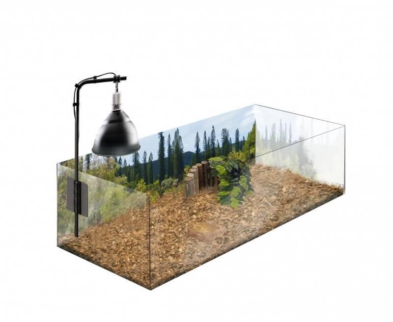 kit tortue terrestre 79 x 39 x 27cm terrarium et meuble. Black Bedroom Furniture Sets. Home Design Ideas