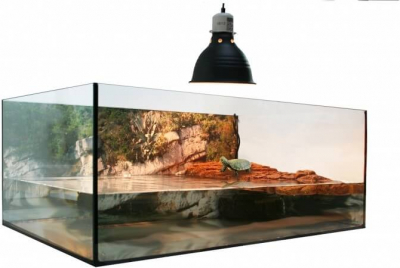Kit terrarium tortue aquatique 60x35x23xM