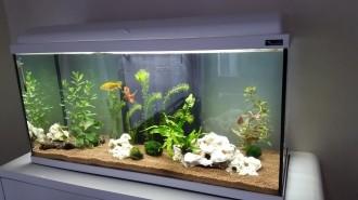 Aquadream-80-blanc-90-litres-avec-eclairage-LED_de_Maxime_14056300535ad32cfaf386f2.91295636
