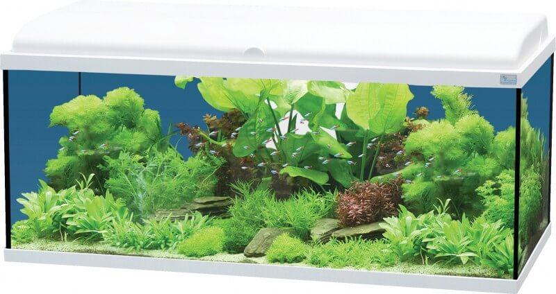 aquadream 80 blanc 90 litres avec 233 clairage led aquarium et meuble