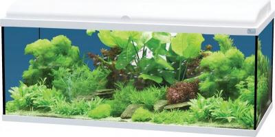 Aquadream 100 blanc 115 litres avec éclairage LED