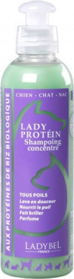 Shampooing LADY PROTEIN