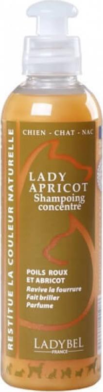 Shampoing LADY ABRICOT