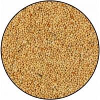 gelbe Hirsesamen - 20kg