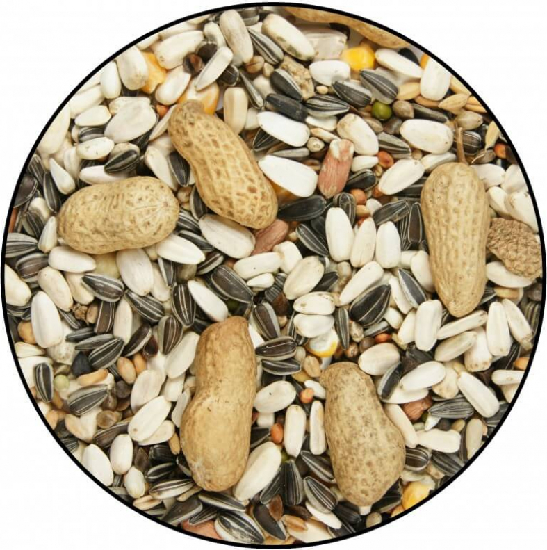 Mélange de graines Perroquets