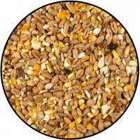 Mélange de graines Tourterelles
