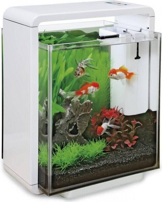 Aquarium blanc - noir - rouge home 25 xl
