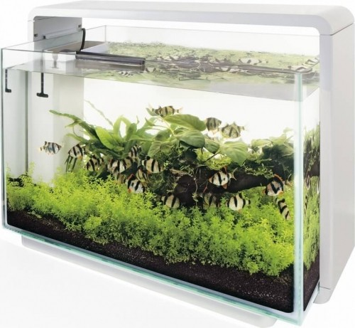 Aquarium blanc noir home 60 aquarium et meuble for Jardiland aquarium