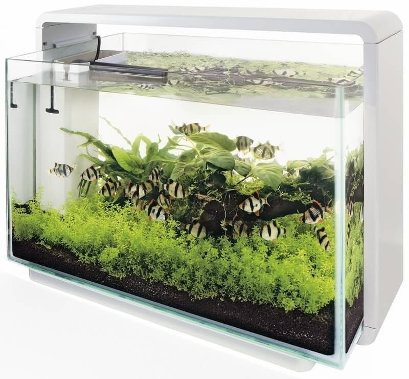 Aquarium blanc noir home 60 aquarium et meuble for Aquarium meuble design