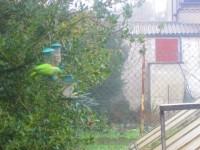 25205_Arachides-décortiquées-pour-oiseaux-du-ciel_de_gilles_688737339593a3022c20e29.20257561