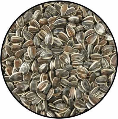 Sunflower Seeds 8kg