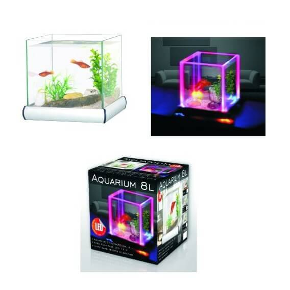 petit aquarium pour combattant. Black Bedroom Furniture Sets. Home Design Ideas