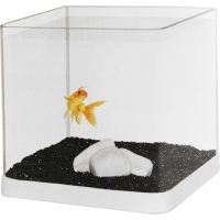 Kit aquarium avec angles arrondis et 1 kg de sable